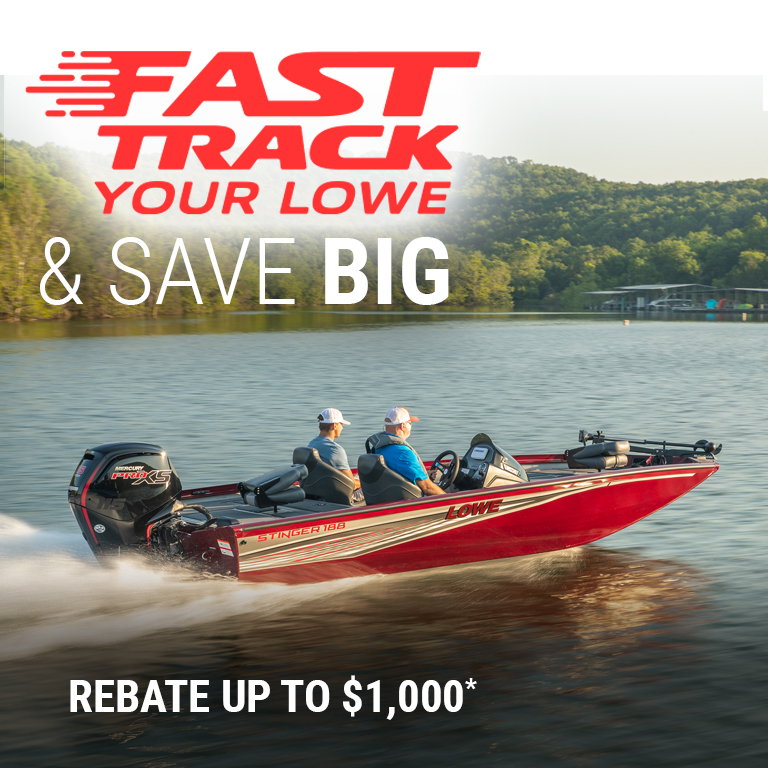 Fast Track Your Lowe & Save Big